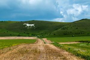 Alton Barnes White Horse App