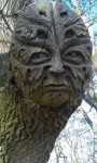 Bamberg Greenman Carving