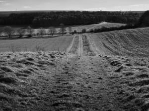 Rushall Farmland Walk