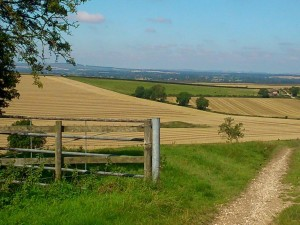 Landscape & Nature in the Vale of Pewsey