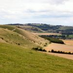 Pewsey Downs National Nature Reserve