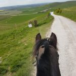 View from the horse