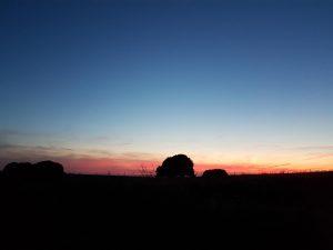 Sunset Walk at Avebury World Heritage Site